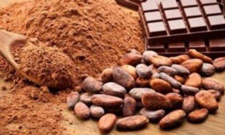 Άνθρωπος και σοκολάτα – Μία σχέση χιλιετιών