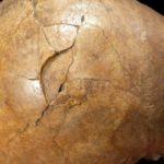 Ελληνίδες επιστήμονες αποκάλυψαν ένα βίαιο φόνο πριν από 33.000 χρόνια