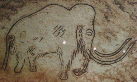 Ζωγραφική σε σπήλαιο της Κίνας ηλικίας 12.000 χρόνων