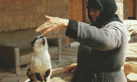 Η μονή των Γάτων στη Λεμεσό