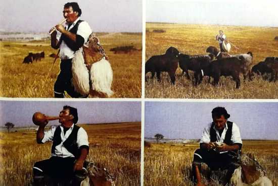 Γιακουμής Ατσίκκος, ο «αγράμματος» βοσκός-ποιητής της Λύσης